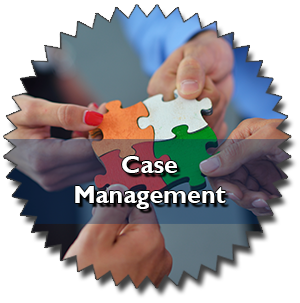 CIRCE Case Management Module.
